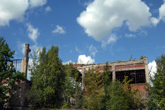 Copper Industry Remains. The Quincy Mill flotation building stands in ruins and overgrown with weeds and bushes. This building is a remnant of the copper mining stock image