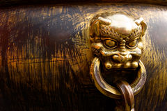 Copper Lion head Royalty Free Stock Images