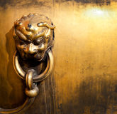 The copper lion Royalty Free Stock Photos