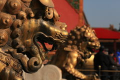 The copper lion in Palcace museum. These two copper lion were located in front of the emporer's palace.They are covered with gold, however, in the dark age of Royalty Free Stock Photography