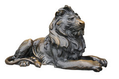Copper lion sculpture Stock Image