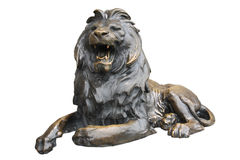 Copper lion sculpture Stock Photography