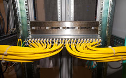Copper network patch panel in a data center Royalty Free Stock Photo
