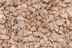 Copper Pieces. A beautiful floor of copper Royalty Free Stock Photos