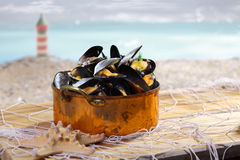 Copper pot of cooked mussels Royalty Free Stock Image