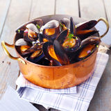 Copper pot of gourmet mussels. Served on a napkin garnished with fresh herbs for a tasty seafood meal stock images