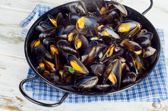 Copper Pot Of Steamed Mussels. Stock Images