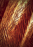 Copper sculpture detail Royalty Free Stock Image
