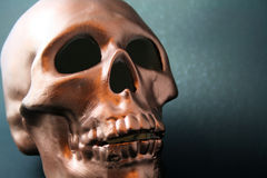 Copper Skull Royalty Free Stock Photography