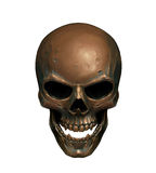 Copper skull Royalty Free Stock Photos