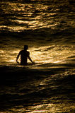 Copper Surf Boy. An image of a young man on Maui, standing in the Pacific Ocean, bathed by the golden light of the setting sun Royalty Free Stock Images