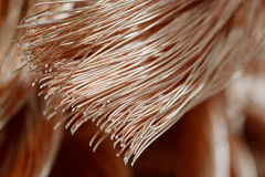 Copper wire Stock Photography