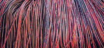 Copper wire burned Royalty Free Stock Images