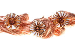 Copper wire with coils Stock Photography