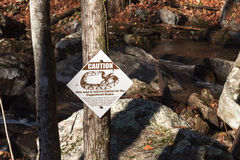 Copperhead Snake Warning Sign In A Forest
