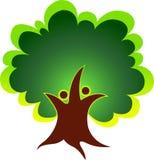 Coppia l'albero Immagine Stock