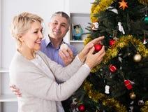 Coppia la preparazione celebrare durante il suoi Natale e nuovo anno domestici fotografia stock