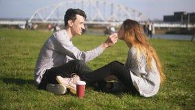 Coppia la seduta nel parco sull'erba, ridendo, parlando, sorridente L'uomo prende la cura della ragazza, rimuove i capelli dal su archivi video