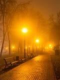 Coppia la sera nebbiosa nel parco Immagine Stock