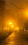 Coppia la sera nebbiosa nel parco Immagine Stock Libera da Diritti