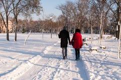 Coppia la tenuta delle mani di ciascuno che passano attraverso il parco nell'inverno Immagini Stock Libere da Diritti