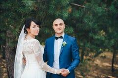 Coppia sposata in foresta Immagini Stock Libere da Diritti