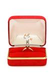 Coppia sposata miniatura in contenitore rosso di anello Immagini Stock