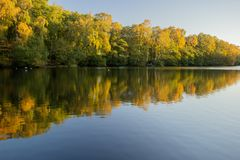 The Coppice Pond, Bingley St Ives stock image