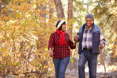 Coppie afroamericane senior che camminano attraverso il terreno boscoso di caduta Fotografie Stock Libere da Diritti