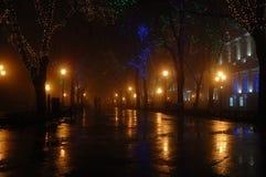 Coppie alla notte nebbiosa, Odessa, Ucraina Fotografia Stock
