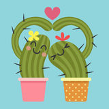 Coppie amorose del cactus Fotografia Stock