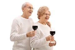 Coppie anziane allegre con i bicchieri di vino Immagine Stock