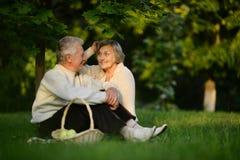 Coppie anziane amorose Fotografia Stock Libera da Diritti