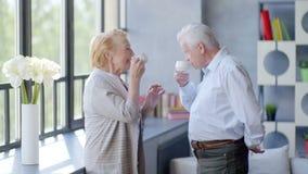 Coppie anziane amorose e felici in un appartamento moderno parlano, bevono il tè e ridono video d archivio