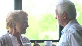 Coppie anziane amorose e felici in un appartamento moderno parlano, bevono il tè e ridono stock footage