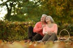 Coppie anziane caucasiche Fotografia Stock