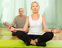 Coppie anziane che hanno yoga a casa Immagine Stock Libera da Diritti
