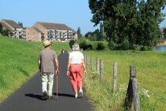 Coppie anziane di camminata Immagine Stock