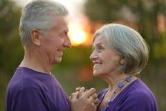 Coppie anziane felici Immagini Stock