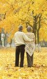 Coppie anziane felici Immagine Stock