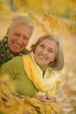 Coppie anziane in foresta autunnale Fotografie Stock Libere da Diritti