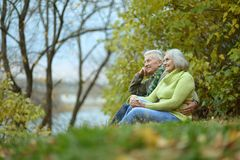 Coppie anziane nella sosta Immagini Stock Libere da Diritti