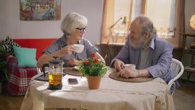 Coppie anziane un uomo e una donna che chiacchierano piacevolmente nella loro sala da pranzo accogliente archivi video
