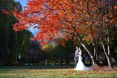 Coppie asiatiche di nozze nelle immagini della natura Immagine Stock Libera da Diritti
