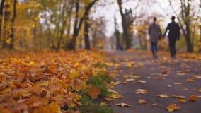 Coppie attraenti che camminano da solo attraverso il parco di autunno video d archivio