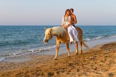 Coppie attraenti con un cavallo sulla spiaggia Immagine Stock