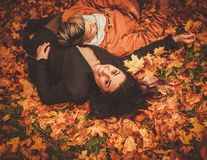 Coppie belle nella sosta di autunno Immagini Stock Libere da Diritti