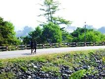 Coppie camminando insieme all'aperto nella campagna fotografie stock