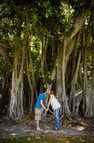 Coppie che baciano sotto l'albero Immagini Stock