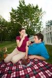 Coppie che bevono al picnic - verticale Fotografie Stock